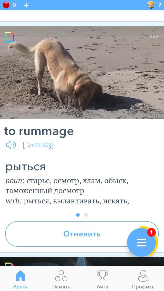 Программа для телефона для запоминания слов Upmind